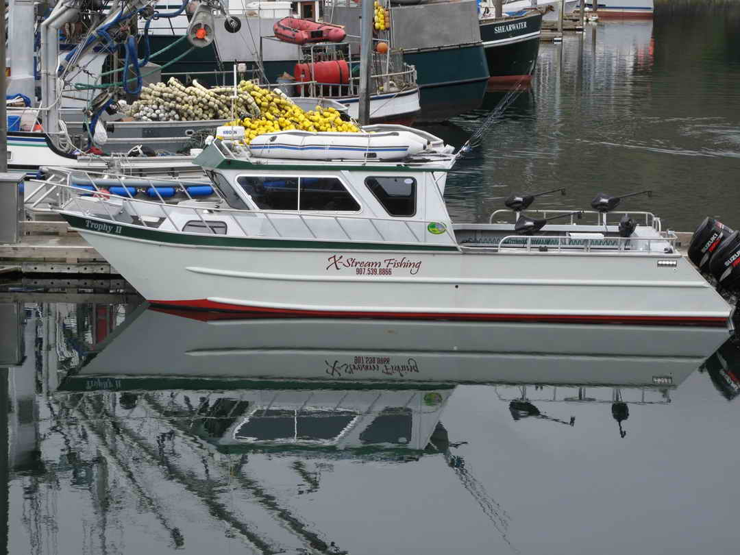 Aluminum Pilothouse Fishing Charter image 0