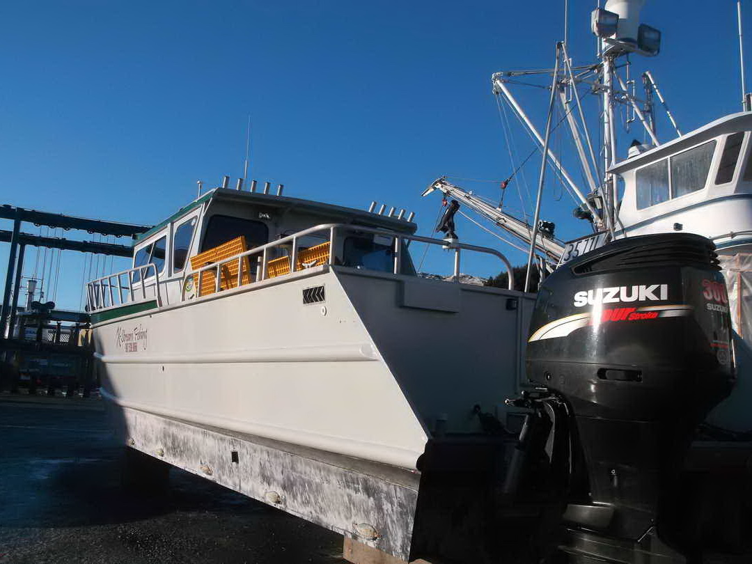 Aluminum Pilothouse Fishing Charter image 3