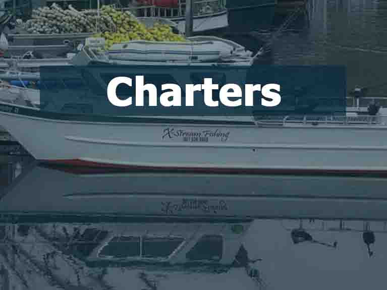 Used Pleasure Charters For Sale
